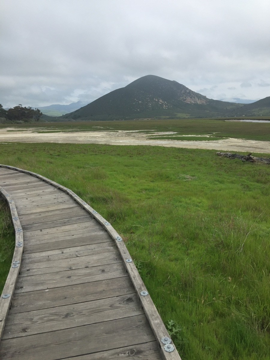 Morro Bay Boardwalk