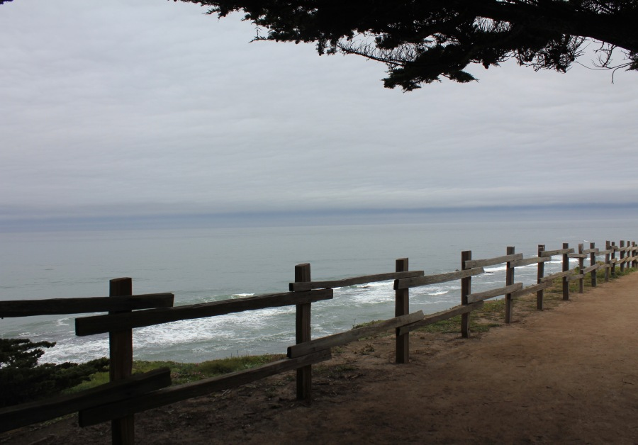 Fence overlooking ocean