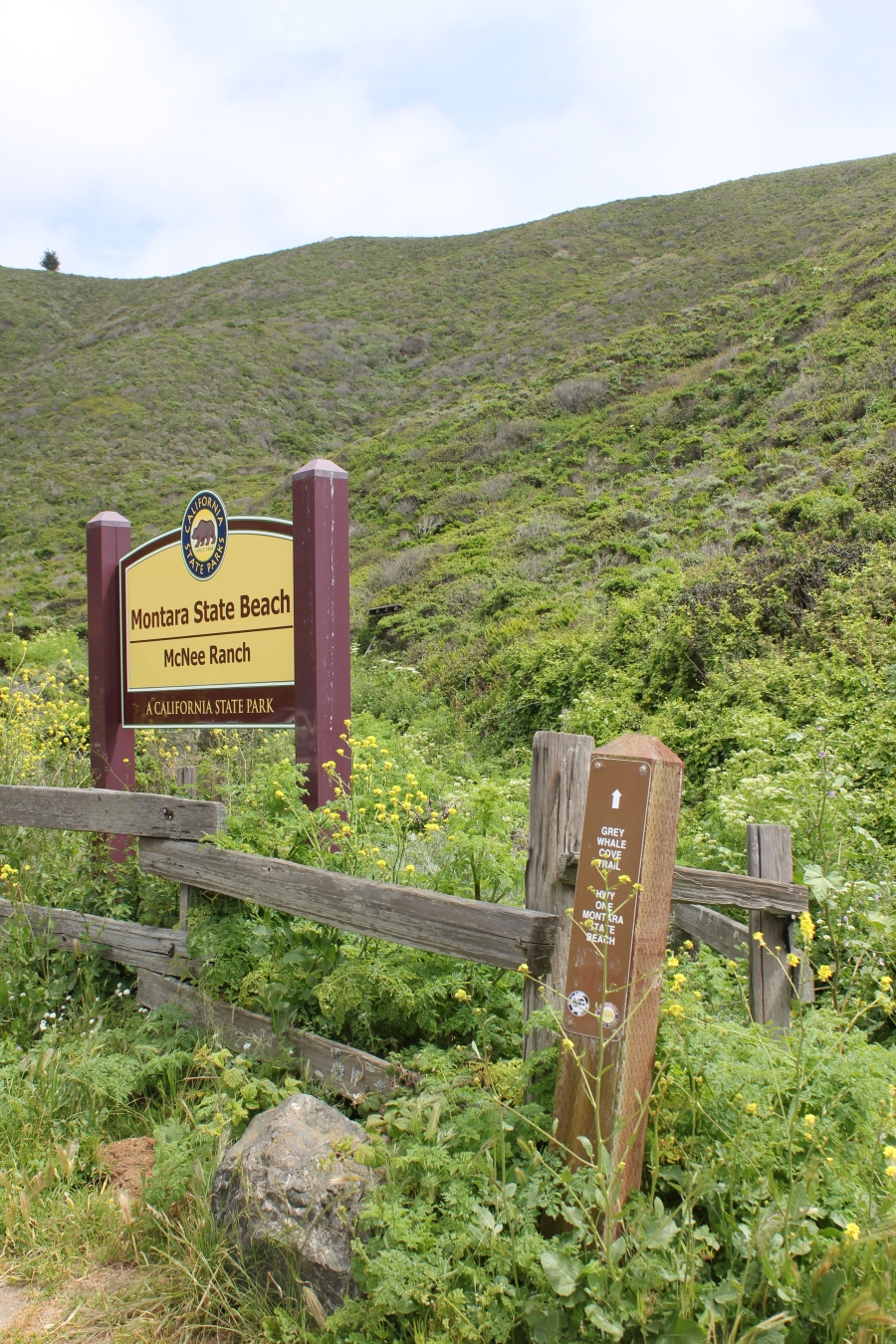 Gray Whale Trailhead Sign