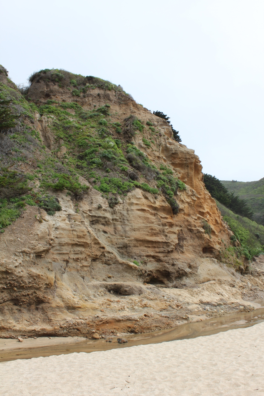 Cliffs surrounding Gray Whale Cove